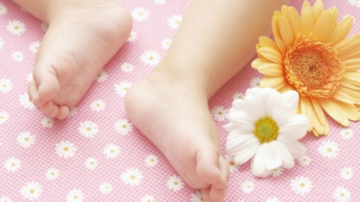 Ketika Baby Daycare Tak Mampu Mencetak Imam Syafii