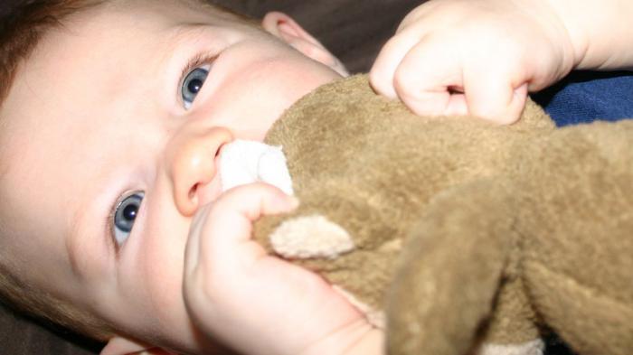 Biarkan Bayi Memasukkan Mainan ke Mulutnya