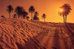 Melihat Tidak Ada Syarat Apa pun, Wahsyi Masuk Islam
