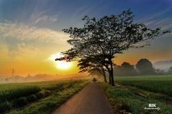 Jika Dunia dalam Hati di Waktu Pagi, Ini yang Akan Anda Rasakan