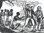 supremasi-perbudakan.jpg