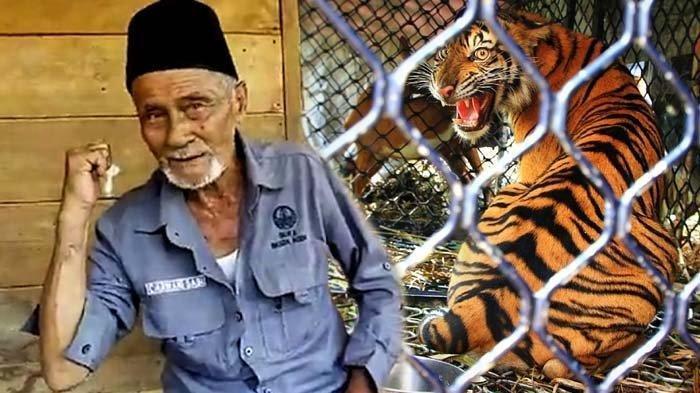 Kek Carwani, Pawang Harimau dari Aceh yang Suka Menghibur