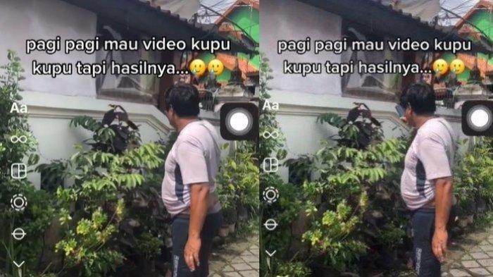 Viral Curhatan Anak soal Ayahnya yang Rela Kepanasan Demi Rekam Kupu-kupu, Hasilnya Bikin Nyesek