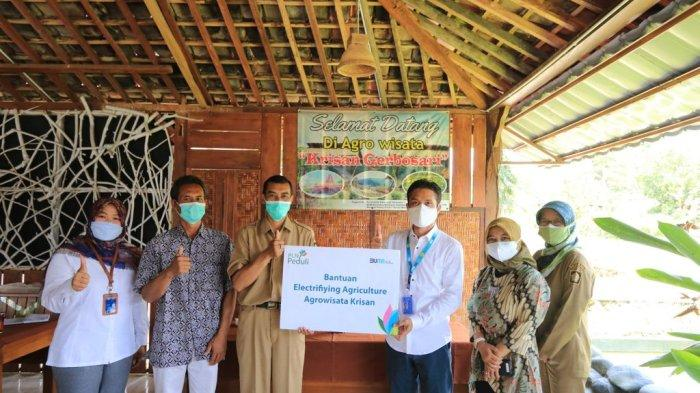 Agrowisata Krisan di Kulonprogo Terima Bantuan PLN Peduli