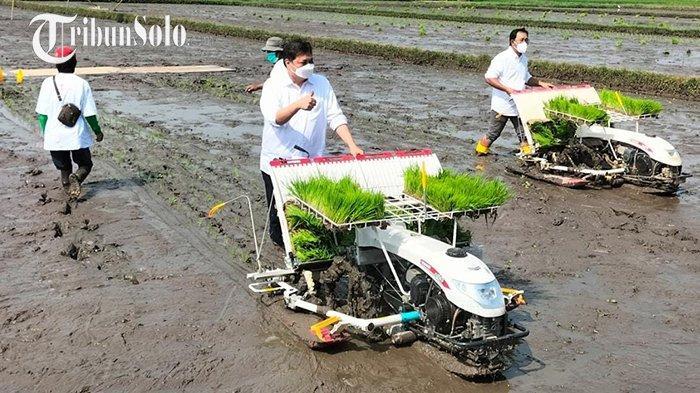 Pemdes Sidowayah Klaten Dorong Munculnya Petani Muda dengan Smart Farming: Penghasilan di Atas UMR