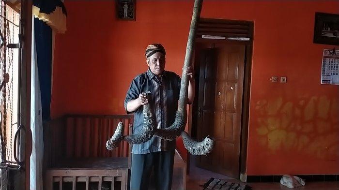 Warga Juwiring Klaten Temukan Bambu Lafadz Allah, Dari Mimpi Ketemu Kakek, Kini Ditawar Rp 500 Juta