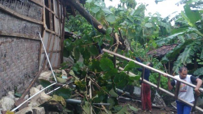 Rentetan Cuaca Buruk di Wonogiri, Seusai Banjir Bandang Kini Angin Kencang dan Pohon Tumbang