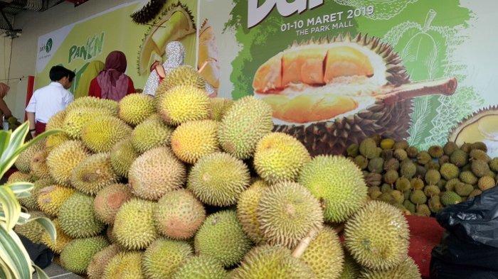 Inilah Tips Memilih Durian dan Mengatasi Rasa Pusing setelah Makan Durian
