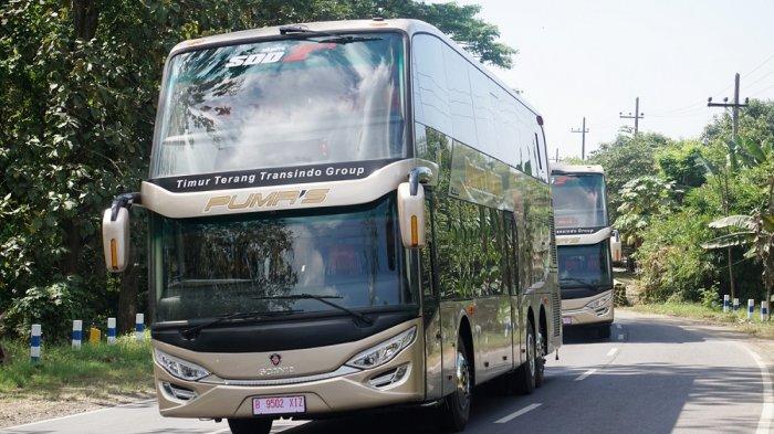 Naik Bus Serasa Pesawat, Ini Harga Tiket Bus Tingkat Pumas Saat Lebaran