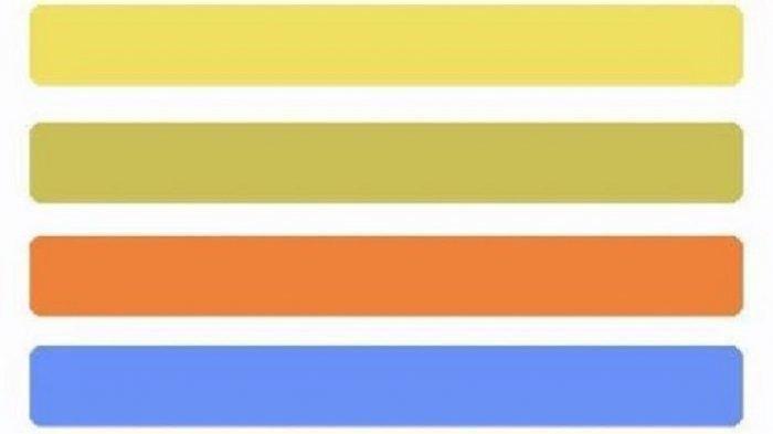 Tes Kepribadian - Pilih Satu dari Empat Warna Berikut, Ungkap Karaktermu Berkharisma atau Sensitif
