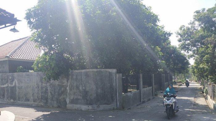 Dosen WN Penyebar Hoaks Setingan KPU Sering Terlihat di Teras Rumah Sebelum Ditangkap Mabes Polri