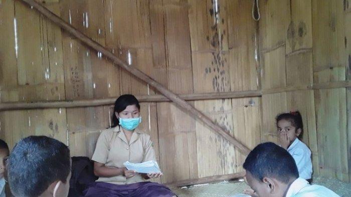 Kisah Elivina Guru Bergaji Rp 200.000 dan Belum Dibayar 2 Tahun, Jual Kemiri untuk Menyambung Hidup