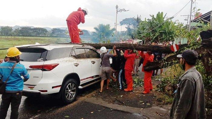 Meski Alami Tragedi Tertimpa Pohon hingga Masuk Jurang, 11 Orang di Mobil Fortuner & Brio Selamat