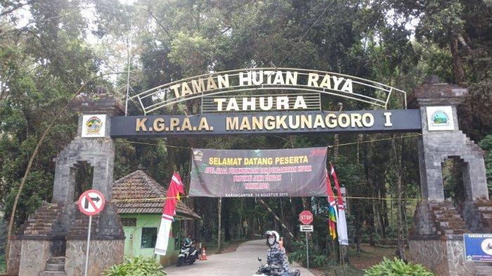 Wisata Alam Taman Hutan Raya (Tahura) Tawangmangu Karanganyar, Ini Harga Tiket Masuknya
