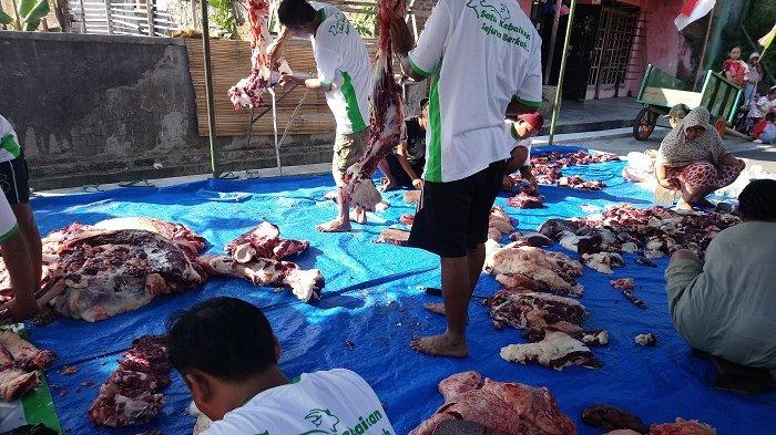 Antisipasi Kerumunan, Penyembelihan Hewan Kurban di Solo Akan Diadakan Satu Hari Setelah Shalat Id