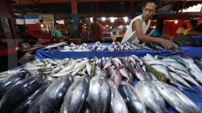 Cermati Sebelum Membeli, Simak 9 Ciri-ciri Ikan Segar dan Layak Dikonsumsi Bagi Tubuh