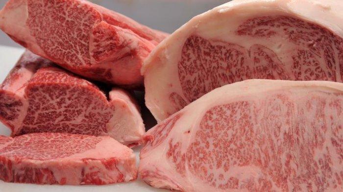 Cara Menyimpan Daging Kurban Mentah ataupun Matang yang Benar, Simak Saran Ahli Berikut
