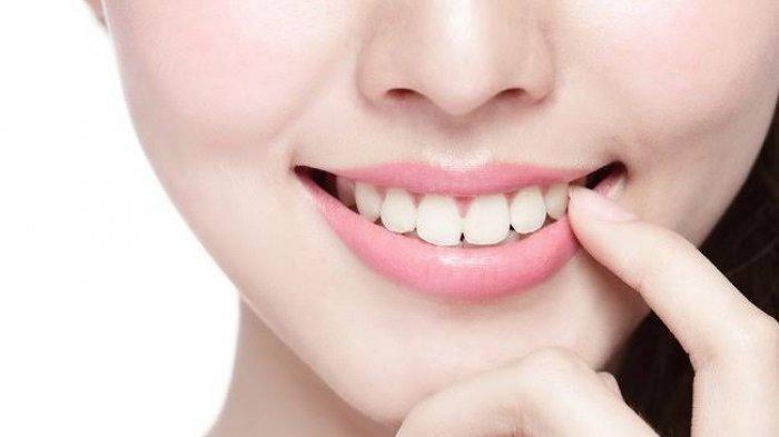Wow, Peneliti di Jepang Ciptakan Obat Penumbuh Gigi, di Masa Depan Jadi Solusi Pengganti Gigi Palsu