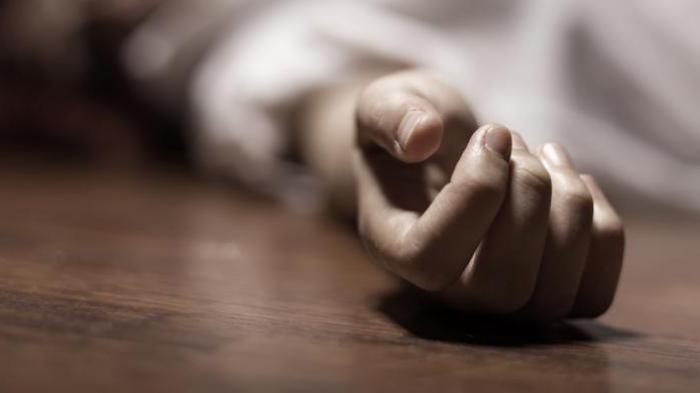 Bunuh Rekan Kerjanya di Kamar Hotel di Magelang, Lalu Serahkan Diri ke Polisi