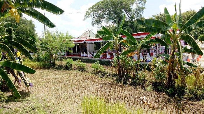 Rumah di Solo, Kenapa Keluarga Besar Presiden Jokowi Pilih Lokasi Makam di Desa? Begini Ulasannya
