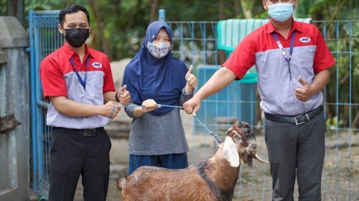 Menyambut Idul Adha, JNE Solo Hadiahkan Kambing Kurban Kepada Netizen