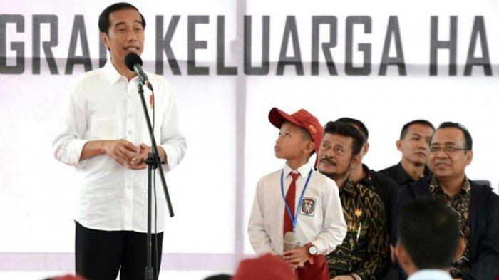Jokowi Minta Universitas Buka Jurusan Kelapa Sawit dan Kopi, Ini Alasannya