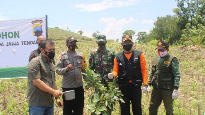 Tingkatkan Ketahanan Pangan, Kapolda Jawa Tengah dan Pangdam IV Diponegoro Tanam Alpukat di Sragen