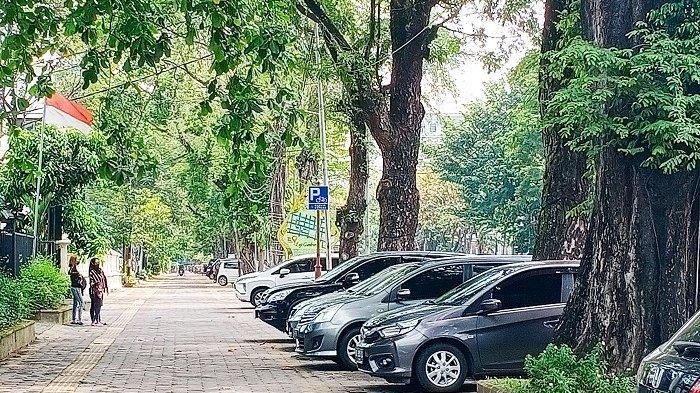 Disulap Seperti Malioboro, City Walk Slamet Riyadi Solo Dilarang untuk Parkir, Warga: Parkir Dimana?