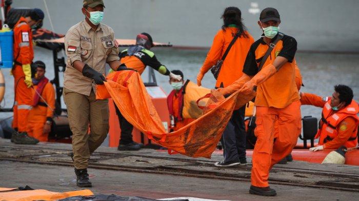 22 Sampel DNA Korban Pesawat Lion Air Belum Dicocokkan, Butuh Waktu 7 Hari
