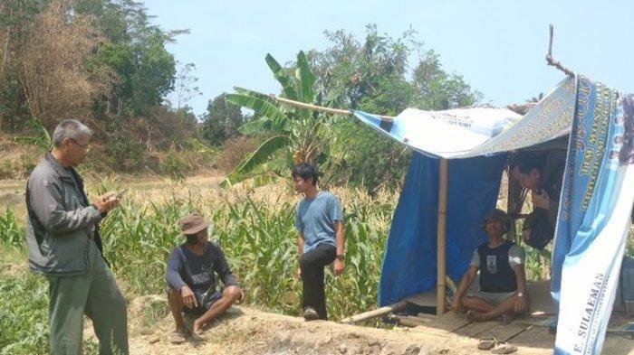 Warga di Sukabumi Kaget, Asyik Ngopi di Kebun Tiba-tiba Ada 2 Macan Tutul Melintas, Diduga Kehausan