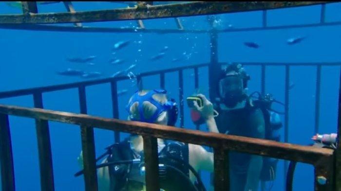 Sinopsis & Trailer Film 47 Meters Down : Tayang 7 Agustus 2020 Pukul 21.30 WIB, di Trans TV