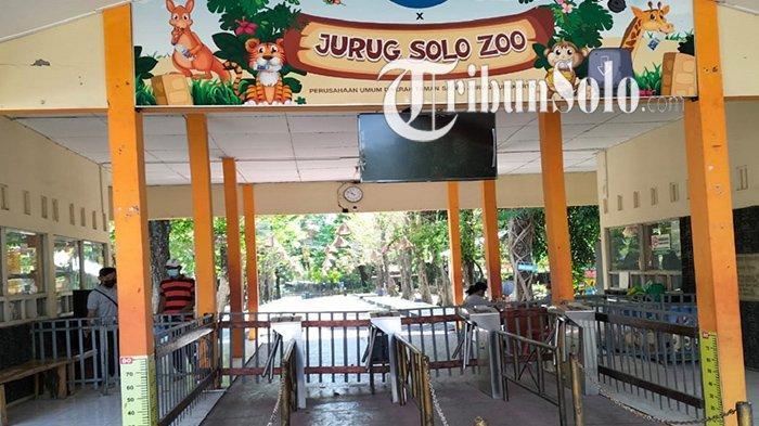 Kebun Binatang di Solo Sepi, Dampak Aturan Anak Dibawah 12 Tahun Dilarang Masuk