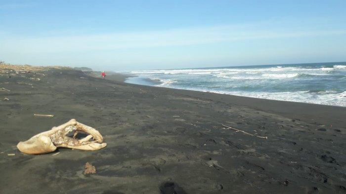 Nikmati Liburan, Ini Pantai Yang Letaknya Berdekatan Dengan Bandara Udara International Jogjakarta