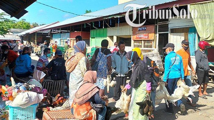 Cobaan Bertubi-tubi, Kemarin Telur Kini Giliran Harga Ayam Kampung Remuk, Pedagang Boyolali Pasrah
