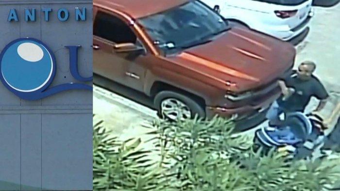 Tiga Orang Tertangkap Kamera CCTV Saat Mencuri Hiu Tanduk di San Antonio Aquarium Texas AS