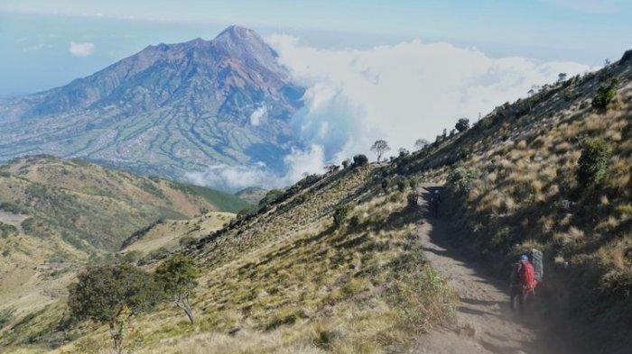 Cara Pendaftaran Online Pendakian Merbabu via Selo, Pendakian Kembali Dibuka 1 Februari 2020