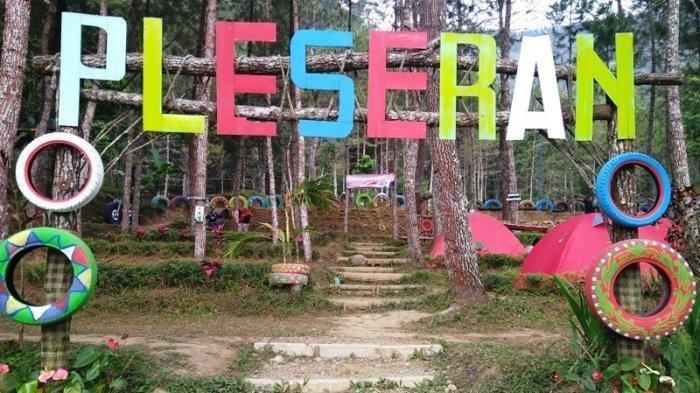 Camping Seru, di Bumi Perkemahan Pleseran Tawangmangu Karanganyar