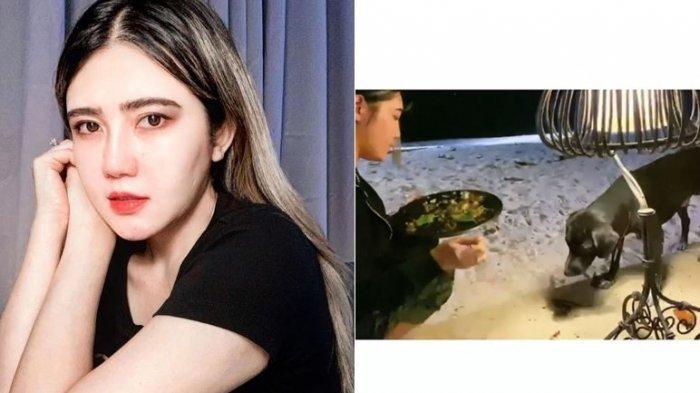 Potret Wanita Cantik Beri Makan Anjing Jalanan Tuai Pujian Netizen, Ternyata Artis Via Vallen