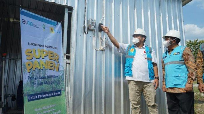 Cara PLN Tingkatkan Produktivitas Perkebunan Melon di Blora, Pelaku Usaha Kini Makin Tenang
