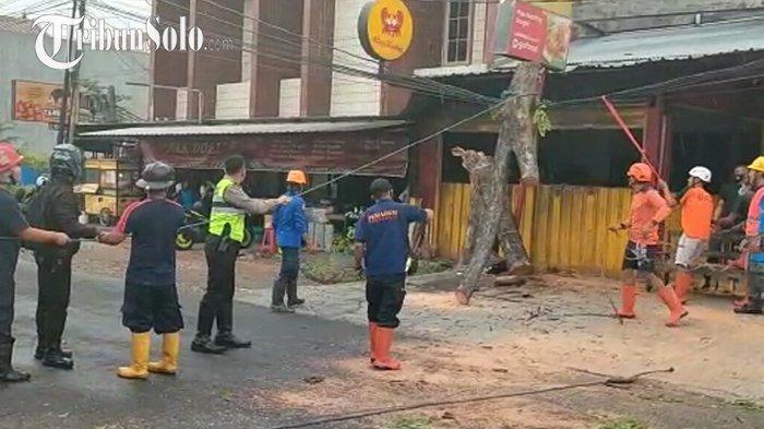 Disapu Angin Kencang, Pohon di Solo Baru Sukoharjo Tumbang, Arus Lalu Lintas Sempat Dialihkan