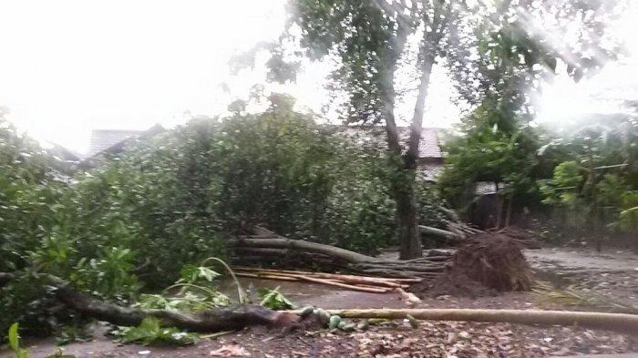 Ratusan Rumah di Bandung Barat Rusak Diterjang Puting Beliung, Begini Kata BMKG
