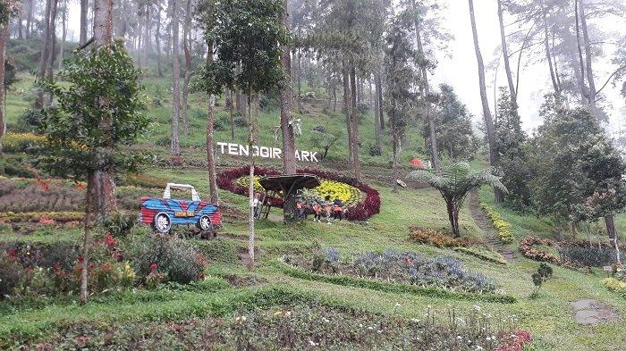 Begini Pesona Keindahan Tenggir Park di Karanganyar, Cocok Dikunjungi Bersama Keluarga Saat Liburan