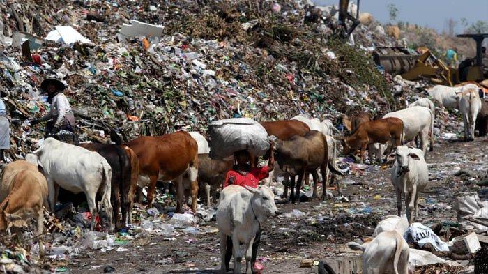 Pemkot Solo Kaji Keuangan Daerah untuk Persiapkan Pembangkit Listrik Tenaga Sampah Putri Cempo