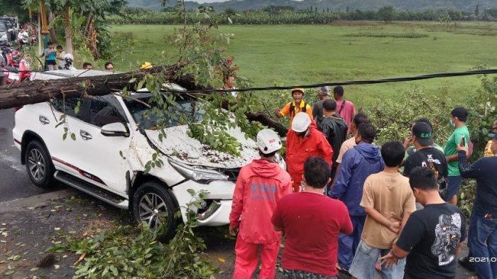 Toyota Fortuner Remuk Tertimpa Pohon di Klaten, Ada 8 Orang Dalam Mobil, Tak Ada Korban Jiwa