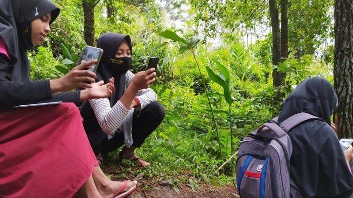 Pejuang Sinyal, Siswa Lereng Gunung Slamet Daki Bukit 700 mdpl Demi Ujian & Pakai Ponsel Bergantian