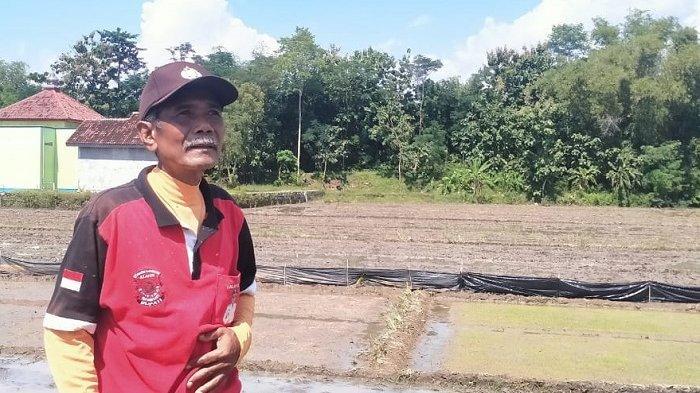 Sosok Kades Suyamto di Kecamatan Karangdowo, Kabupaten Klaten.