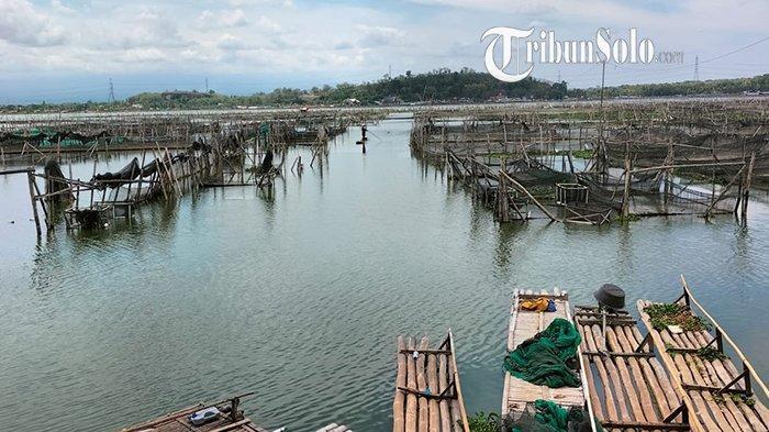 Ternyata di Dalam Rawa Jombor Klaten Ada Pemakaman yang Tenggelam, Umurnya Sudah 100 Tahuh Lebih