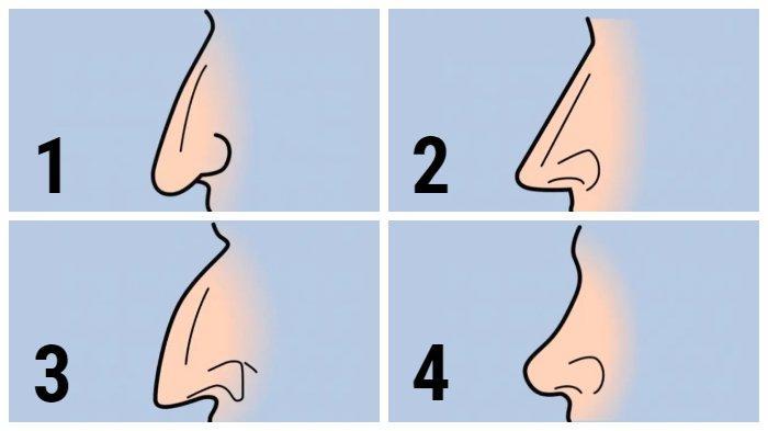 Tes kepribadian bentuk hidung
