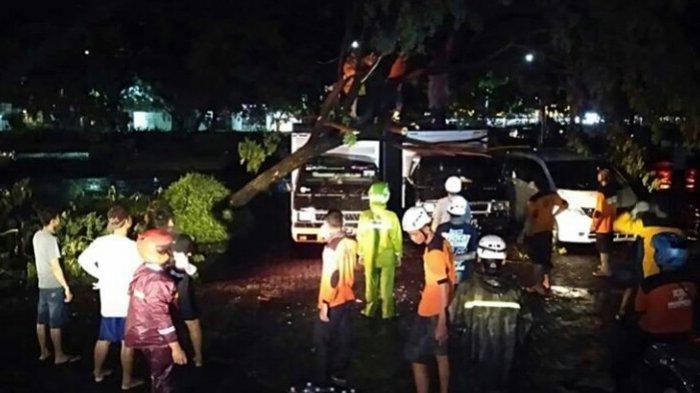 Angin Kencang, Puluhan Pohon di Sukoharjo Tumbang Menimpa 3 Mobil dan 3 Rumah Warga