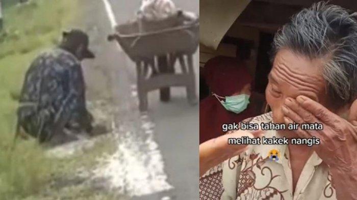 Viral Video Kakek Punguti Beras Tercecer di Jalan, Aksinya Bikin Haru Netizen, Terkuak Kisah Pilu
